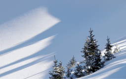 Best Places to Snowmobile in Montana