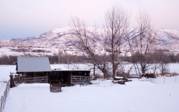 Best Places to Snowmobile in Utah